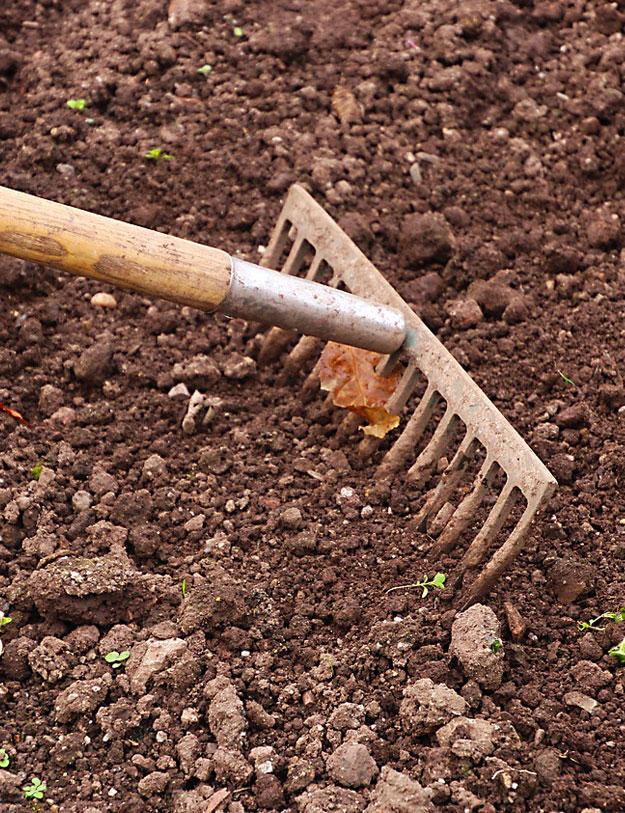 Realizácie záhrad